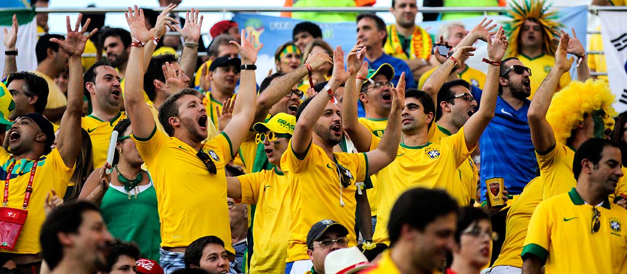 Brazil fans in stadium